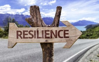 The role of Emotional Resilience in leading a successful life